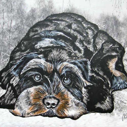 Hund Waldi - Nur keine Hektik.jpg